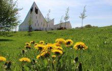 l'église Saint-Pierre dans la nature