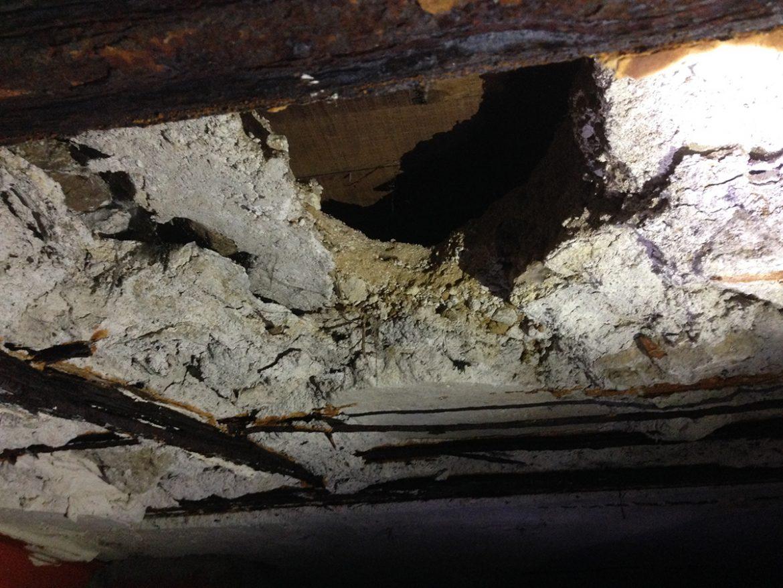 plafond cave avant travaux